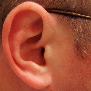 the future of work must have ears